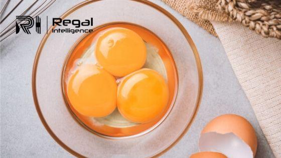 Egg Protein Market