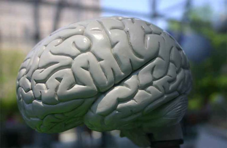 Global-Neurostimulation-Devices-Market-768x501