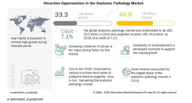 anatomic-pathology-market (1)