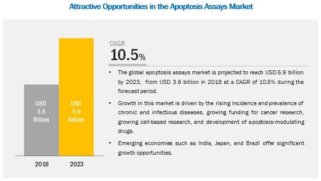 apoptosis-assays-market1