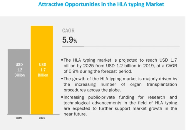 hla-typing-market5 (1)