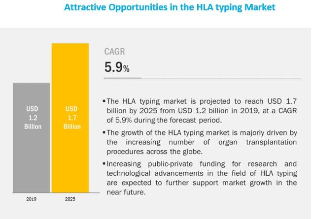 hla-typing-market5