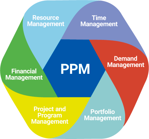 Project Portfolio Management