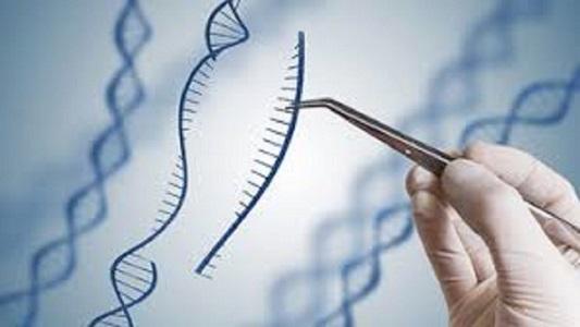 CRISPR Technology Market (1)