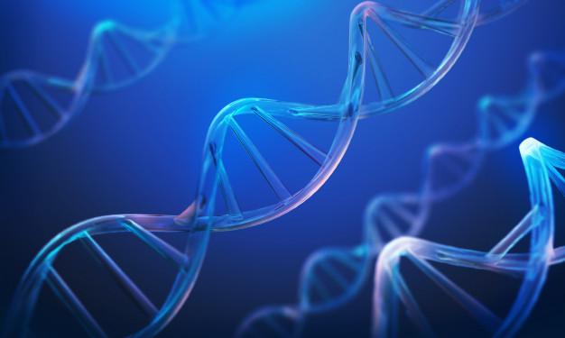 Protein Stability Analysis Market