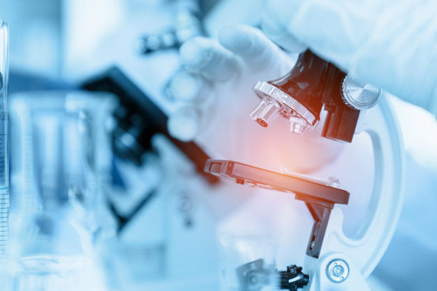 Scaffold Technology Market