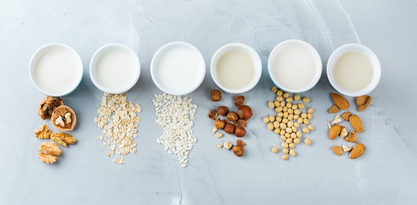 Plant Based Milk Market