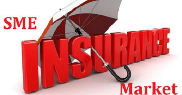 SME insurance Market