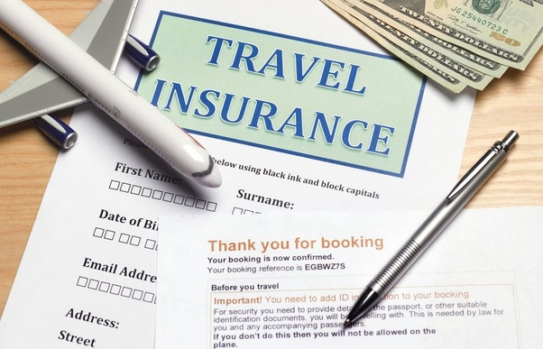 Travel Insurance Market1