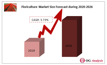 Floriculture Market Size Forecast during 2020-2026