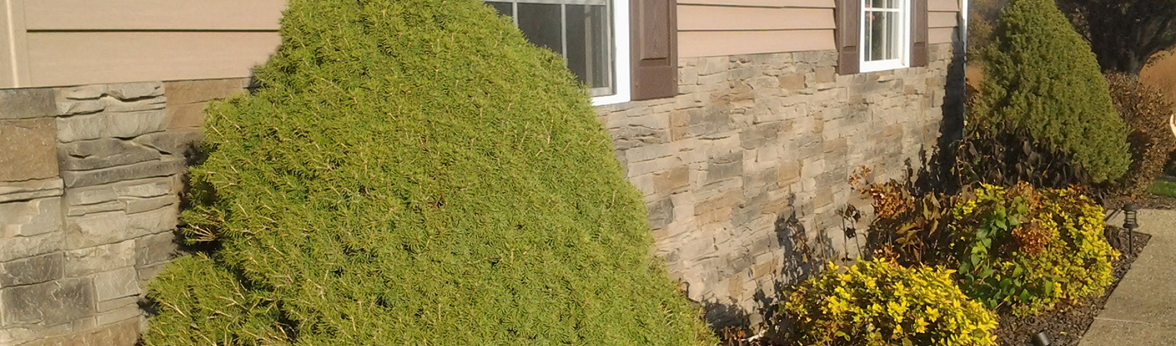 Faux-Stacked-Stone-Panels-by-GenStone
