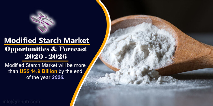 Modified Starch Market