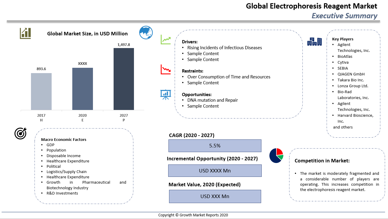 Global Electrophoresis Reagents Market Summary