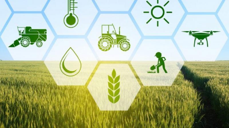 Agricultural Crop Insurance Market