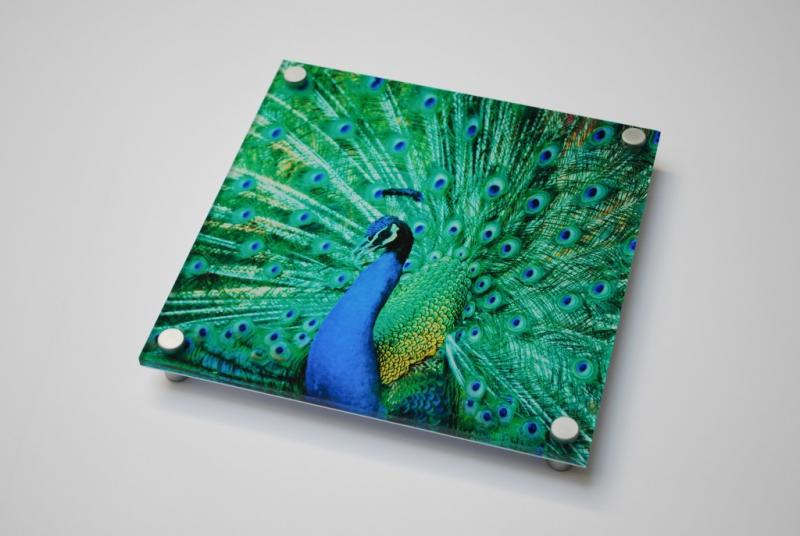 Digital Acrylic Sheets Market