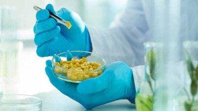 Food Pathogen Testing market