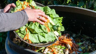 Food Waste Management market