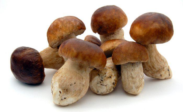 Frozen Mushrooms market