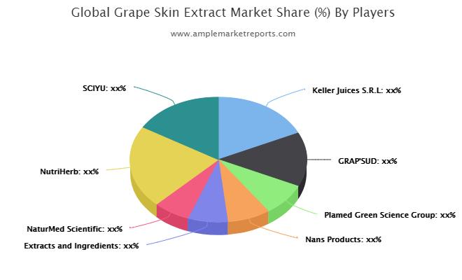 Grape Skin Extract Market