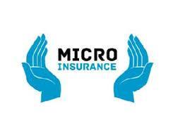 Micro insurance Market