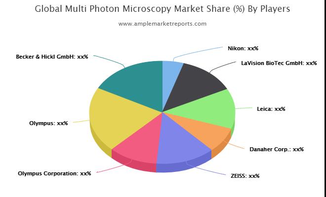 MultiPhoton Microscopy Market