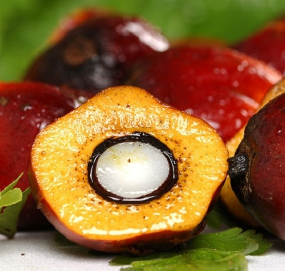 Palm Oil and Palm Oil Residual market