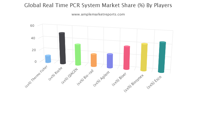 Real Time PCR System market