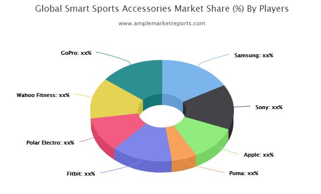 Smart Sports Accessories market