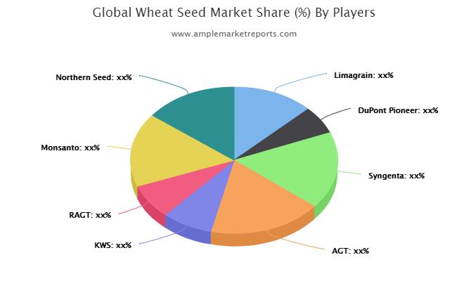 Wheat Seed Market