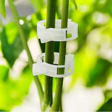 Plant Support Clip