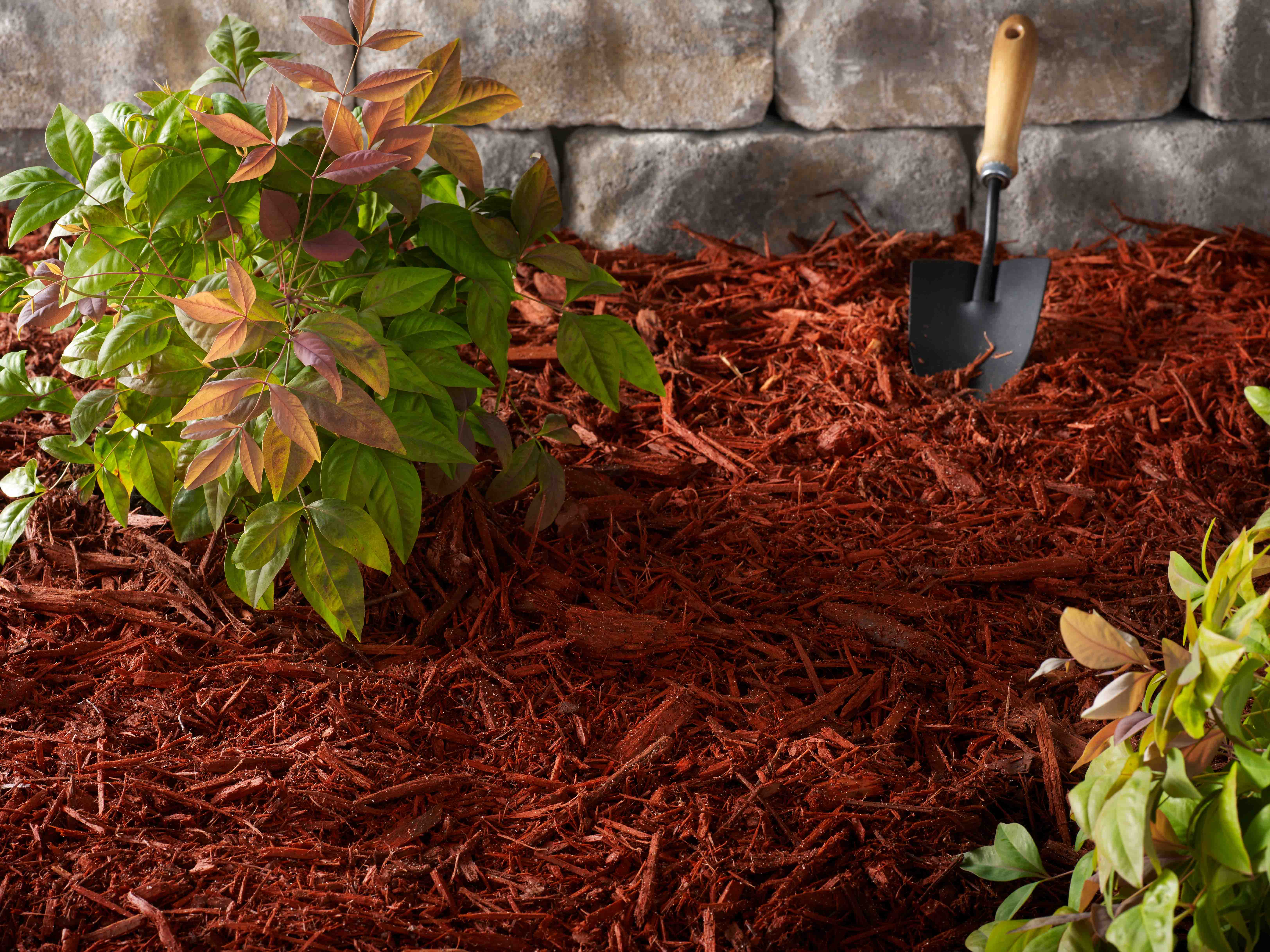 CST Photo - Red Mulch